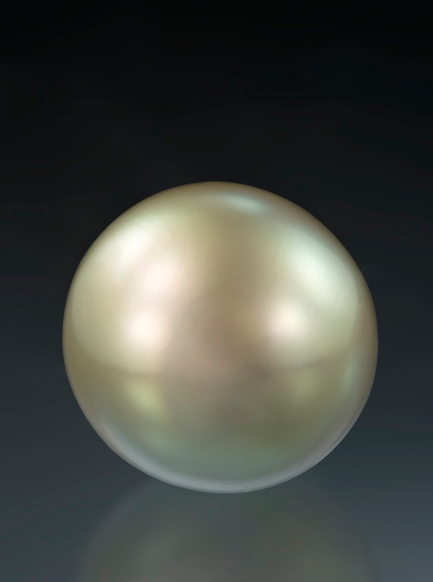Natural pearl pteria sterna, 6.18 ct.